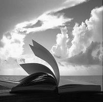 livro_vento[35]
